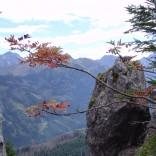 Jesień w górach